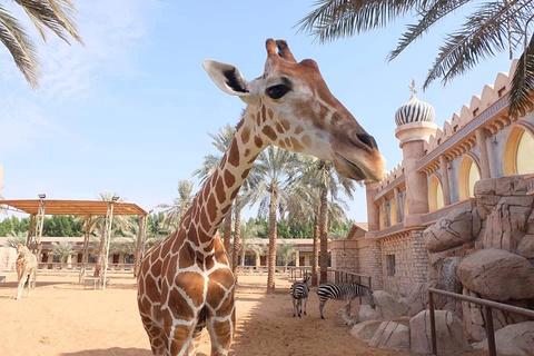 阿联酋公园动物园旅游景点攻略图
