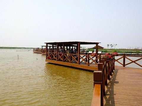 七里海国家湿地公园旅游景点图片
