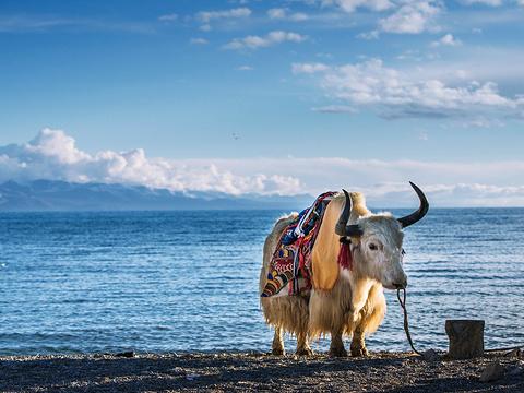 纳木措旅游景点图片