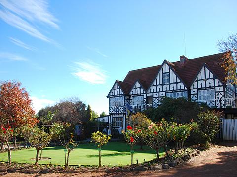 科金顿绿色花园旅游景点图片