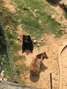 无锡动物园旅游景点攻略图