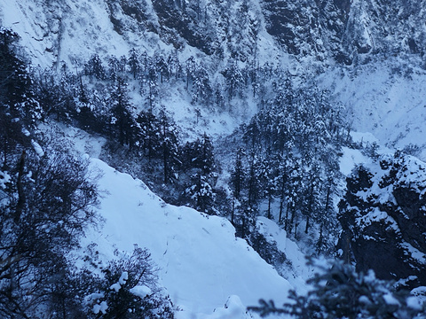 西岭雪山旅游景点图片