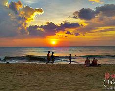 在春色的风里相遇—斯里兰卡11日自助游