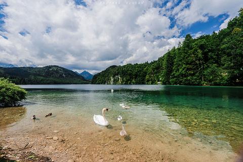 阿尔卑斯湖
