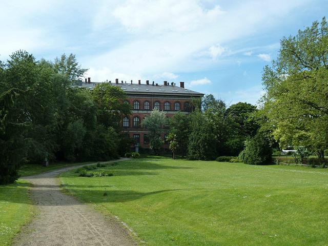 """""""树影斑驳~~夏日的北欧好美丽。出来之后就有点晕头转向,不知该去哪里,于是往回走。途径一个植物园_哥本哈根大学植物园""""的评论图片"""