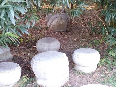 白马公园旅游景点图片