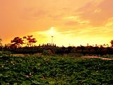 萍乡旅游景点攻略图片