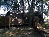 博茨瓦纳旅游景点攻略图片