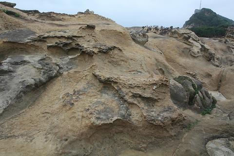 野柳地质公园旅游景点攻略图