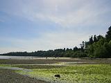 优鹤国家公园旅游景点攻略图片