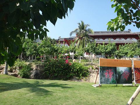南山文化旅游区旅游景点攻略图