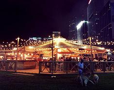 新奥尔良迈阿密圣诞狂欢旅