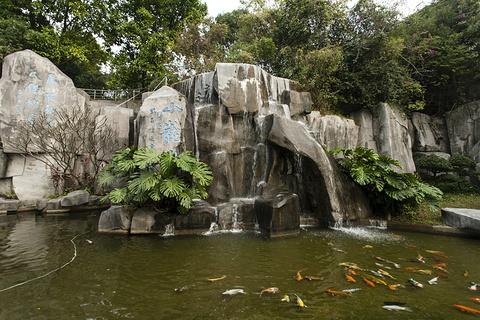 紫马岭公园的图片
