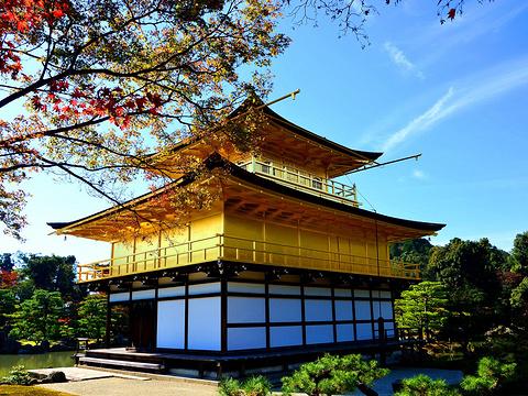 金阁寺旅游景点图片