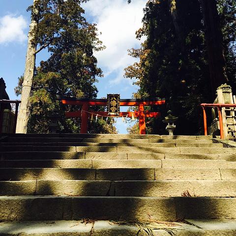 """""""日本各地有很多八幡宫 其实就是祈福的神社_大崎八幡宫""""的评论图片"""