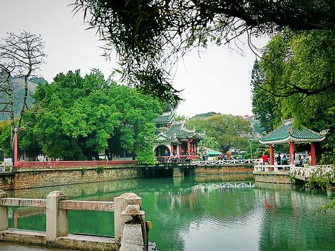 菽庄花园旅游景点图片