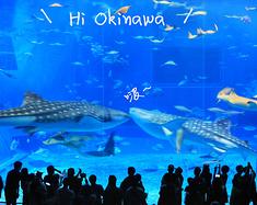 温柔的蓝色琉球,冲绳5日,附渡嘉敷岛全攻略