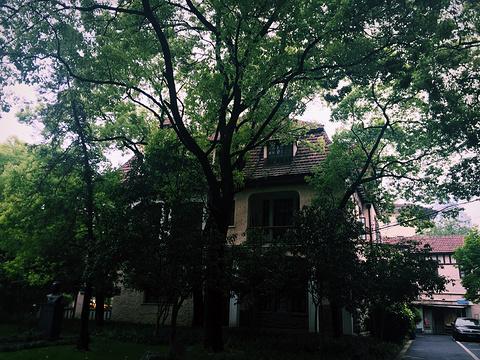 上海音乐学院旅游景点图片