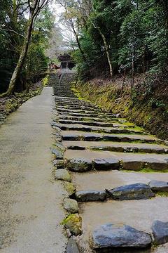 神护寺旅游景点攻略图
