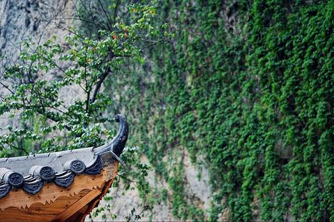 虎穴洞旅游景点攻略图