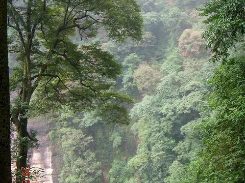 朝阳洞旅游景点图片