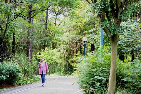 马鞍山森林公园旅游景点攻略图