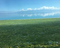 新疆 在那遥远美丽的地方