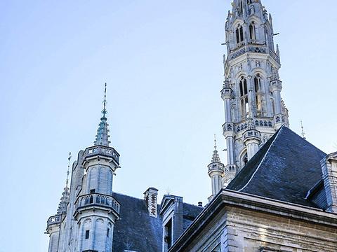 布鲁塞尔市政厅旅游景点图片