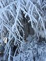 亚布力冰雪欢乐谷
