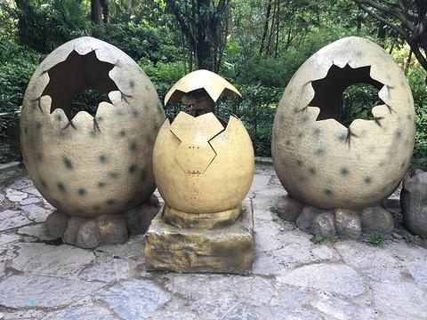 重庆动物园的图片