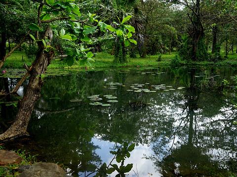皇宫公园旅游景点图片