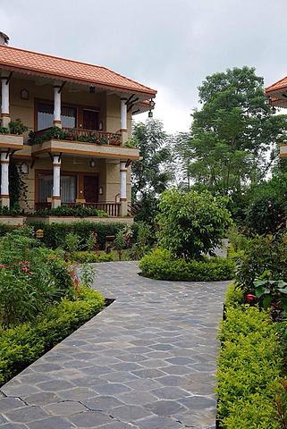 2019   Park Chitwan,位于奇特旺国家森林公园附近,环境优美
