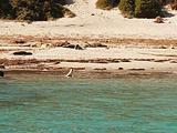 艾尔半岛旅游景点攻略图片