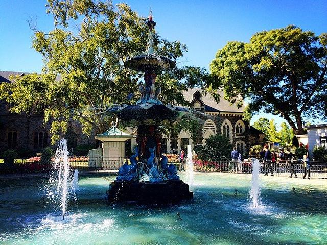 """""""都以最适切的环境展示在游客面前_基督城植物园""""的评论图片"""