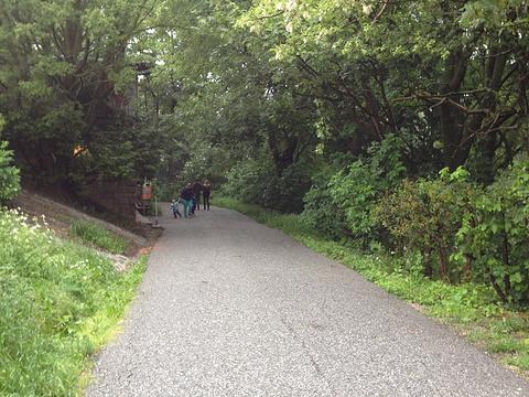 卡伦山旅游景点图片