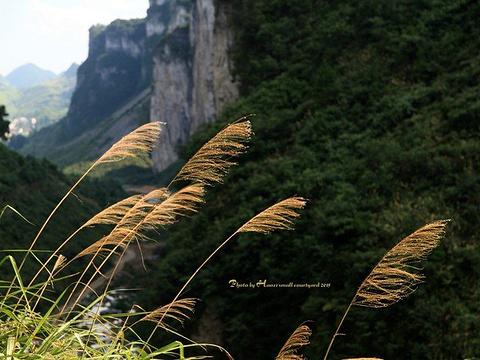 大江口旅游景点图片