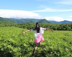 是时候去北海道了:梦幻夏日之旅