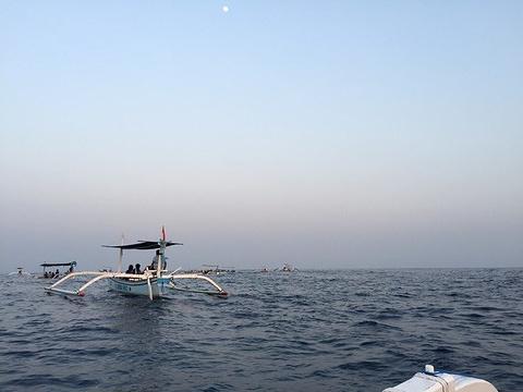 罗威那海滩旅游景点攻略图