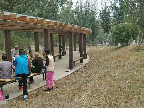 东小口森林公园旅游景点图片