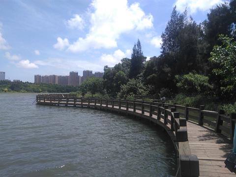 五缘湾湿地公园旅游景点攻略图