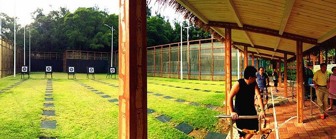 射箭&球类运动图片