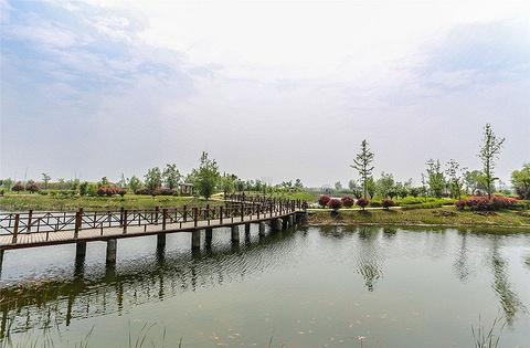 泗洪洪泽湖湿地