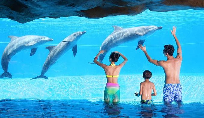 长隆横琴湾水世界图片