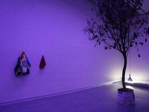 台北市立美术馆旅游景点图片