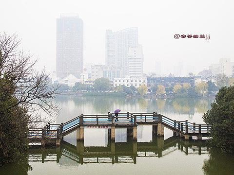 镜湖公园旅游景点图片