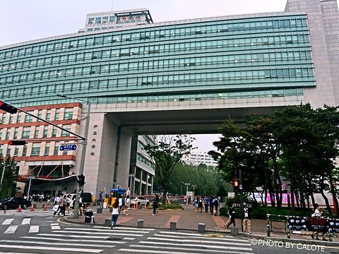 弘益大学旅游景点攻略图