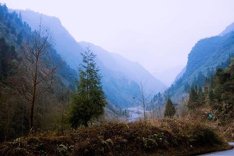 黑水河大熊猫自然保护区旅游景点攻略图