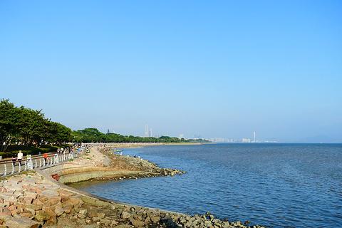 深圳湾公园