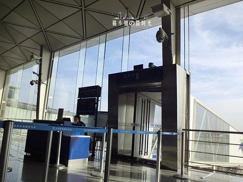 滨海国际机场旅游景点图片