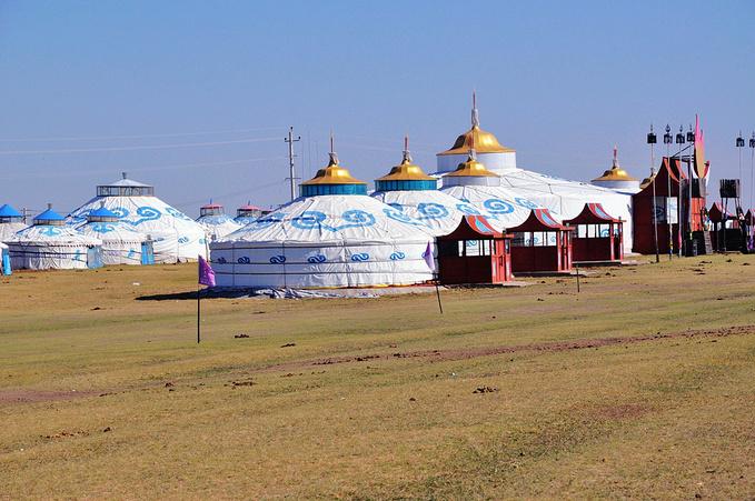 金帐汗蒙古部落图片